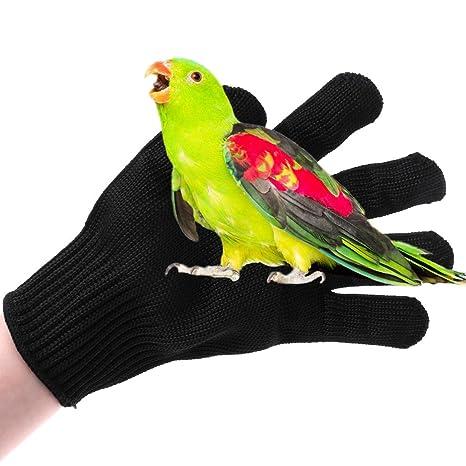 Guantes De Protecci/ón De Seguridad De Trabajo De Masticaci/ón De H/ámster Loro Manyo Guantes Anti-mordeduras De Aves