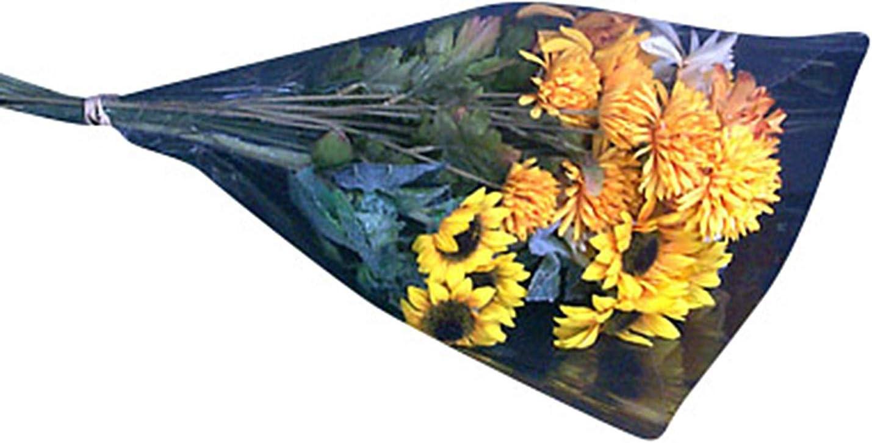 Clear Cut Flower Bouquet Sleeves x 16 Tall x 3 at Bottom 12 diam