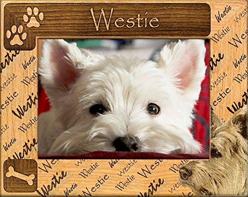 (GWP West Highland White Terrier (Westie) Engraved Alderwood Frame in 4 sizes #0171)