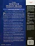 Nolte's The Human Brain: An Introduction to its