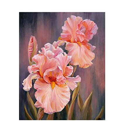 Amazon Com Sunersty Flower Diy Digital Oil Painting Paint By Number