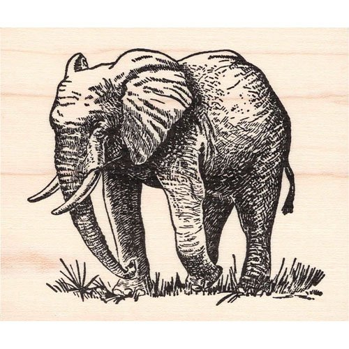 Elephant Rubber Stamp Africa Wildlife (Stamp Africa)