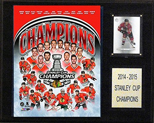 (NHL Chicago Blackhawks Men's 2014-2015 Stanley Cup Champions Plaque, 12