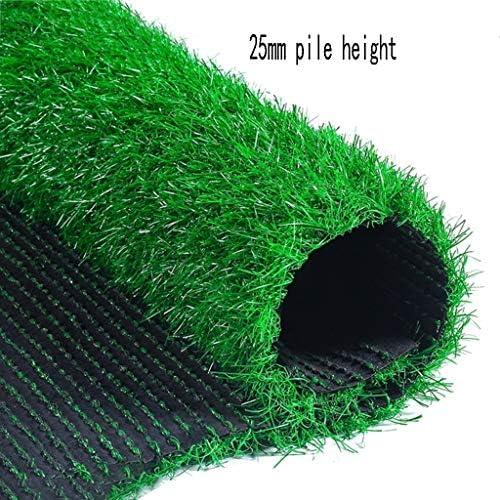 XEWNEG ガーデン人工芝、暗号化された、耐久性のある、柔らかくて快適な合成カーペットマット、屋外のバルコニーの装飾に適して (Size : 2×10m)