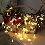 Greensen Battery Operated String Lights 40 LED Star Shaped Tent Light 19.7 ft Fairy Light for Indoor Decoration