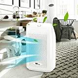 amzdeal Dehumidifier for Basement with 2L(68 oz) Water Tank for 2200 Cubic Feet(269 aq.ft) Room Kitchen Bathment Bathroom Silent Mode for Sleeping Portable Smart Dehumidifier
