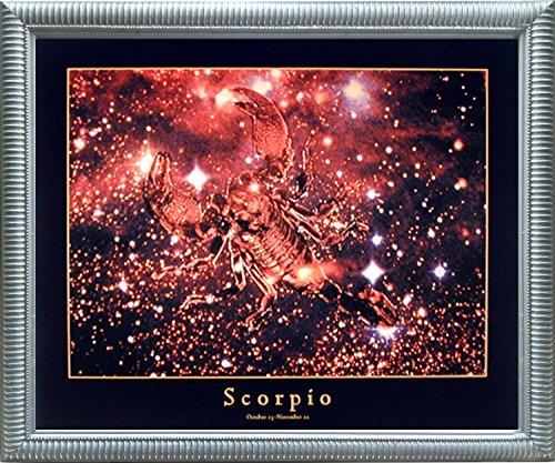 Astrology Scorpio Oct 24 to Nov 22 Zodiac Silver Framed Picture Art Print (20x24)