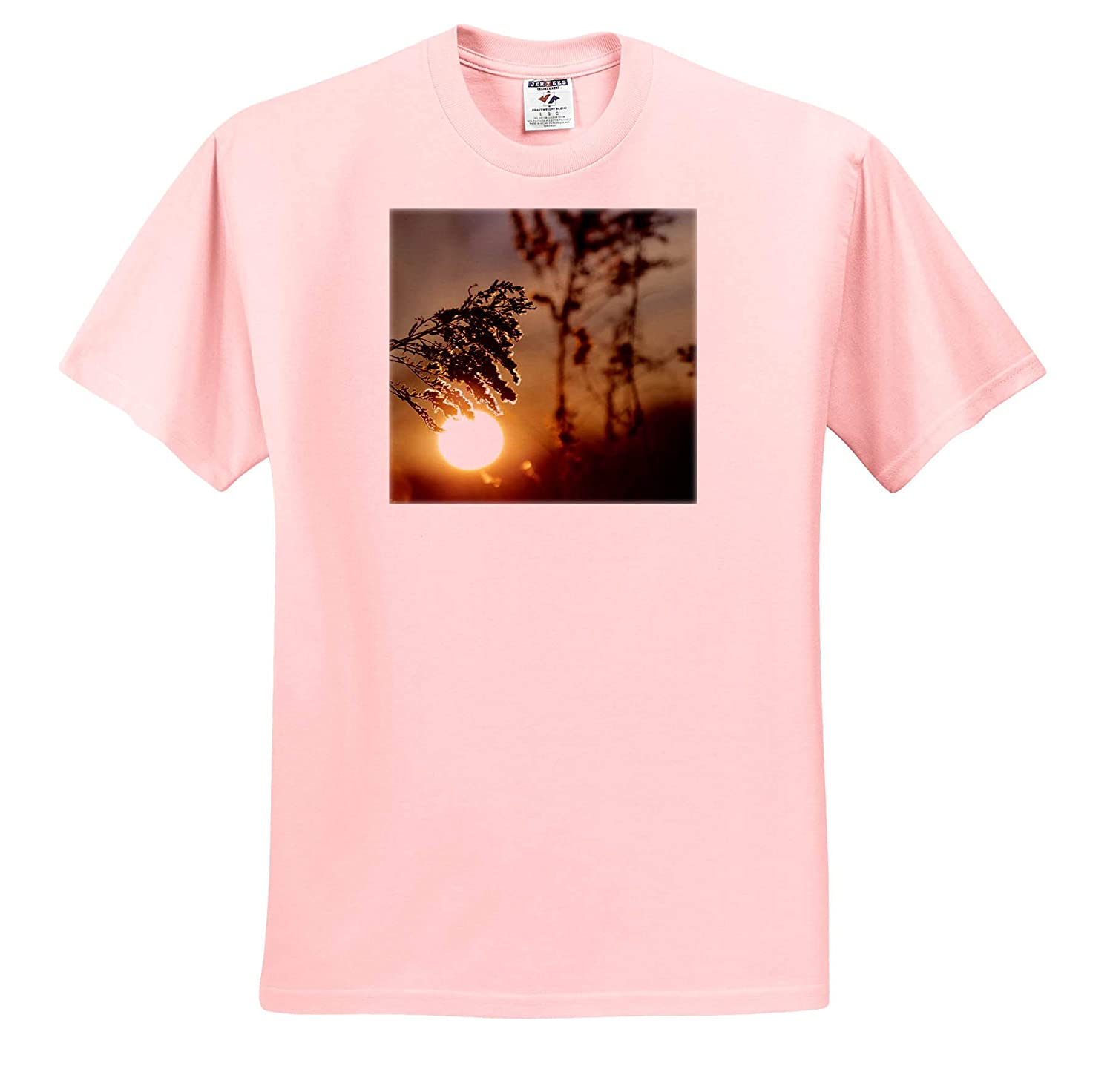 ts/_308736 3dRose Stamp City - Adult T-Shirt XL Photograph of a Sunrise Through a Field of Wheat Nature