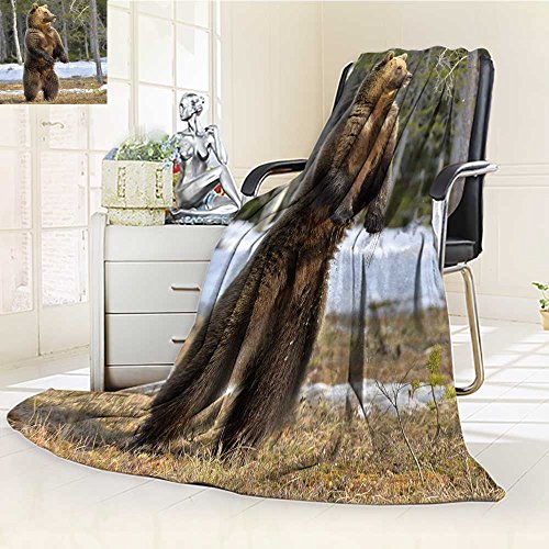 (Fleece Blanket 300 GSM brown bear ursus arctos standing on his hind legs in spring forest Anti-static Double-sides Reversible Super Soft Warm Fuzzy Bed Blanket(90