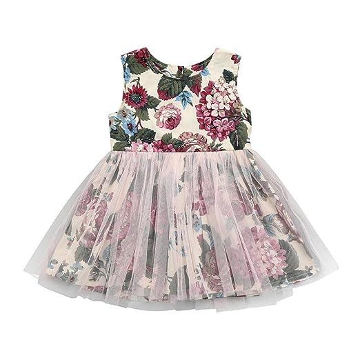 0ba818ea13d10 Amazon.com: Lavany Little Girls Dresses Cute Tulle Floral Print Tutu ...