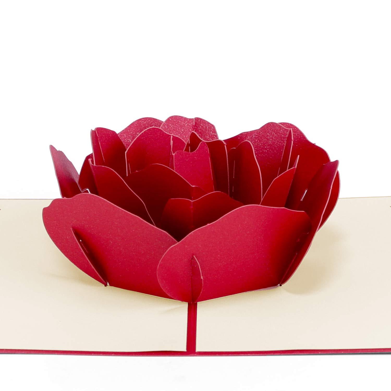 Biglietto Auguri Matrimonio Pop Up : Paper spiritz biglietto auguri matrimonio 3d biglietto auguri pop up