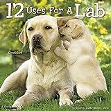 12 Uses for a Lab 2018 Calendar