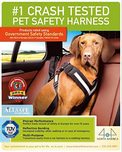The Original AllSafe Harness X Large
