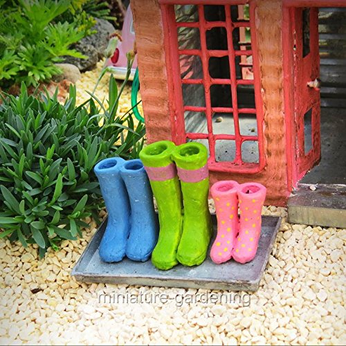 Miniature Fairy Garden Wellies on Boot Tray - My Mini Garden
