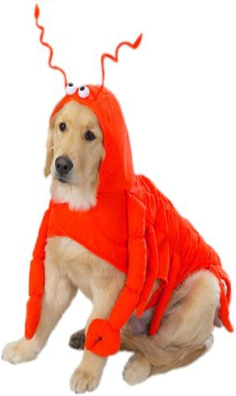 """Casual Canine Lobster Paws Dog Costume, X-Large (fits lengths up to 24""""), Red-Orange"""