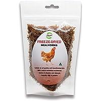 Pisces Enterprises Freezedried Mealworm Poultry Treats 40g
