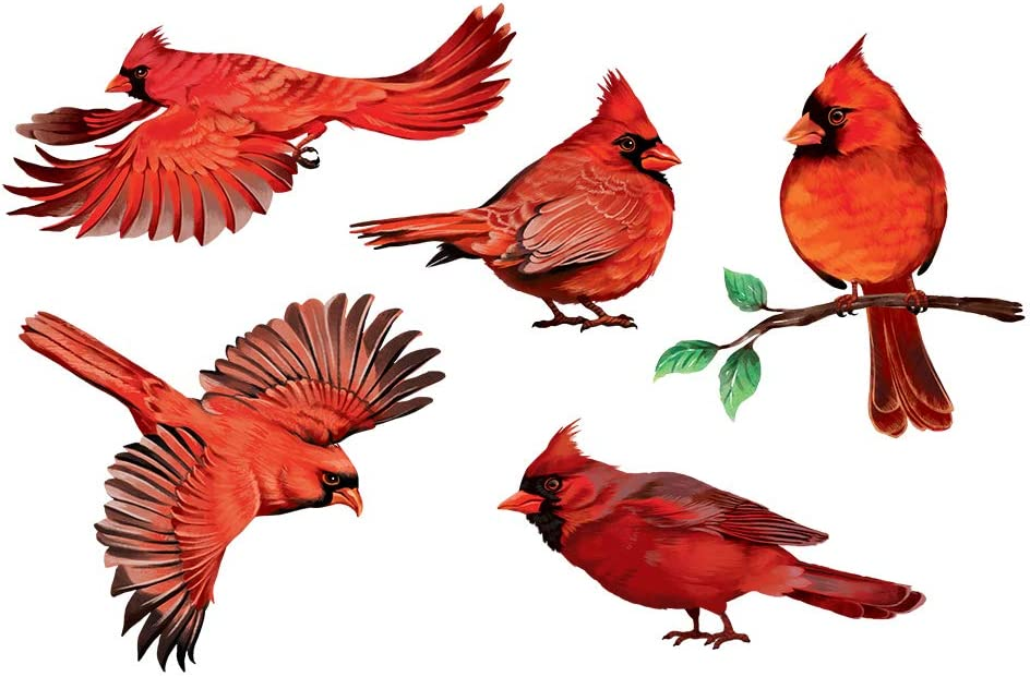 WIRESTER Decal Vinyl Wall Stickers Decoration for Home Office Living Room Wall Bathroom, Red Cardinal Birds