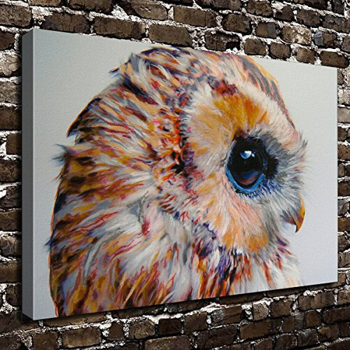 COLORSFORU Wall Art Painting Owl Prints On Canvas The Picture Landscape Pictures Oil for Home Modern Decoration Print Decor for Living Room (Owl On Canvas)