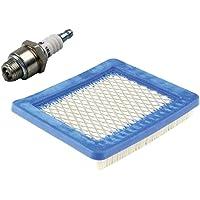 gardexx Luchtfilter + bougie voor grasmaaiers met Briggs & Stratton Quantum motor