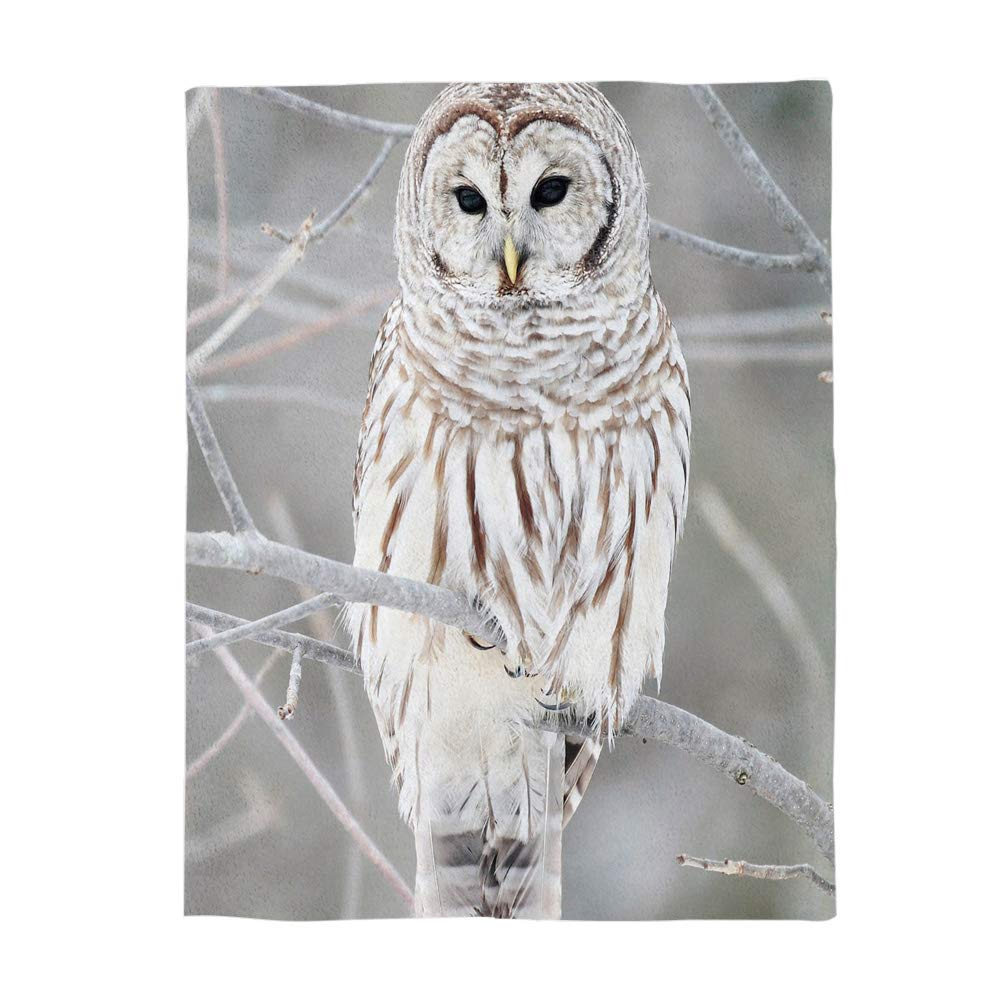 MuswannaA Bird 40x50 inch Throw Blanket Plush Fleece Stadium Blanket White Owl Perch On Tree All Season Throw for Bed, Couch, Sofa, Camping, Beach