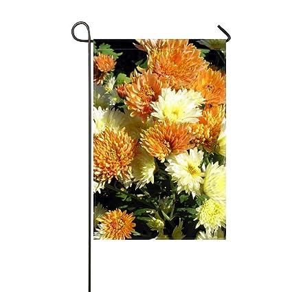 Amazon zlu garden flag aster flowers white orange flowerbed zlu garden flag aster flowers white orange flowerbed light 12x18 incheswithout flagpole mightylinksfo