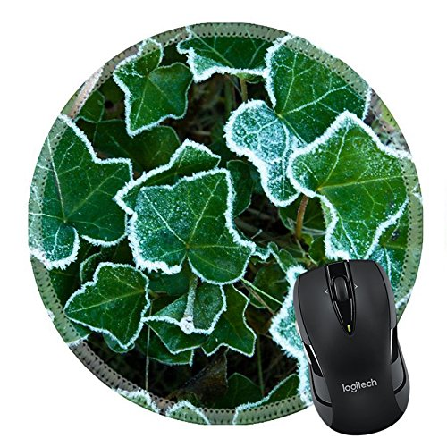 MSD Mousepad Round Mouse Pad/Mat 35127209 Frosted leaves of english ivy