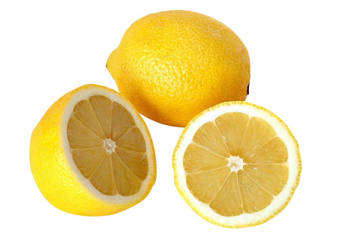 Zitrusbaum Anpflanzanleitung f/ür Anf/änger Zitronen Samen 5 stk