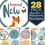 Monthly Baby Stickers - Huge 28 Pack of Baby Boy Onesie Belly Stickers. Includes 12 months, 1st year milestones + first holidays. Perfect baby shower + newborn birthday gift. (Woodland)