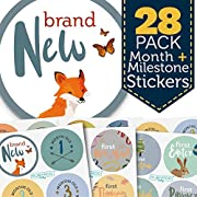 Baby Month & Milestone Stickers - 28 Pack - Baby Boy Onesie Belly Stickers. Includes 12 monthly, 1st year milestones & first holidays. Perfect baby shower & newborn birthday gift. (Woodland)
