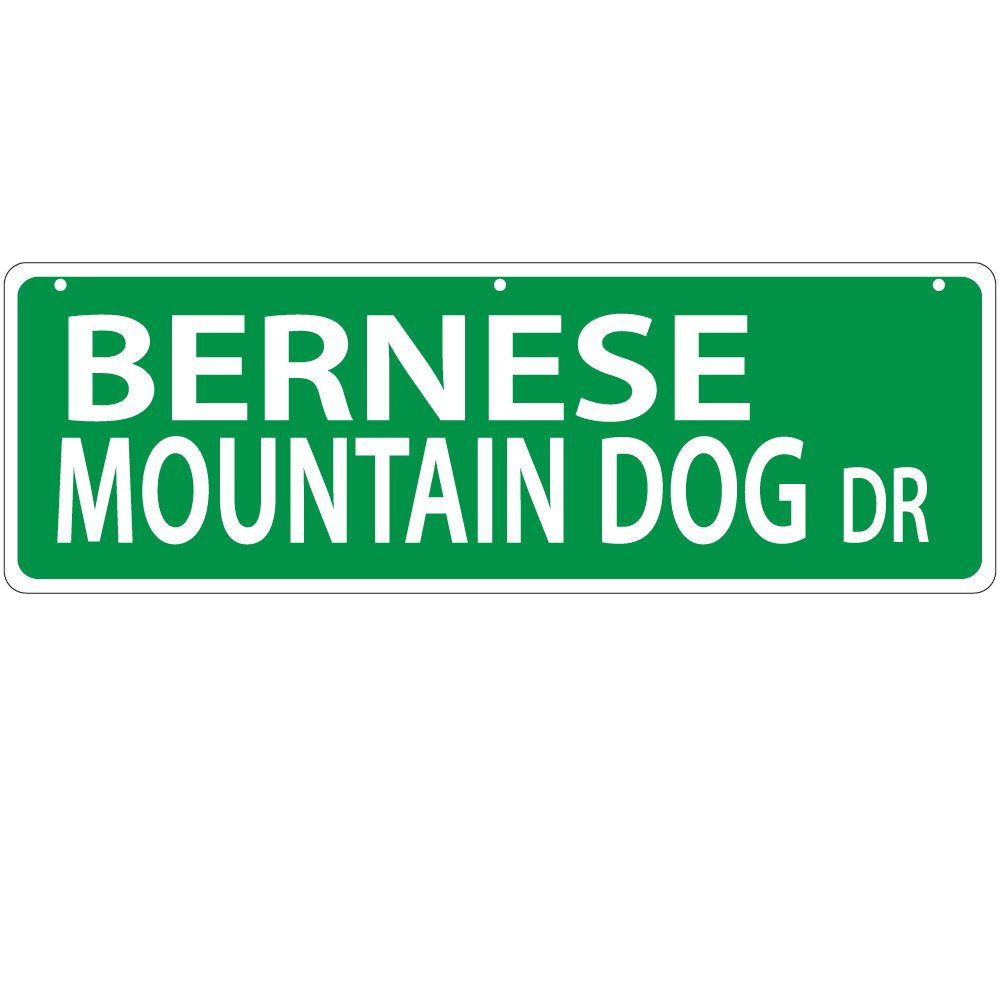 Imagine This Bernese Mountain Dog Street Sign
