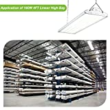 Hykolity 4FT Linear LED High Bay Light, LED Shop
