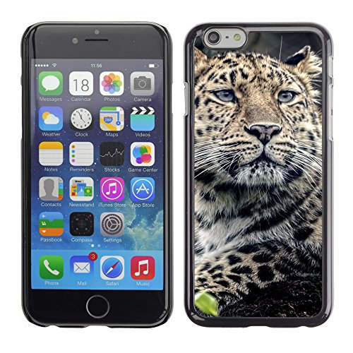 "Premio Sottile Slim Cassa Custodia Case Cover Shell // V00003562 léopard museau // Apple iPhone 6 6S 6G PLUS 5.5"""