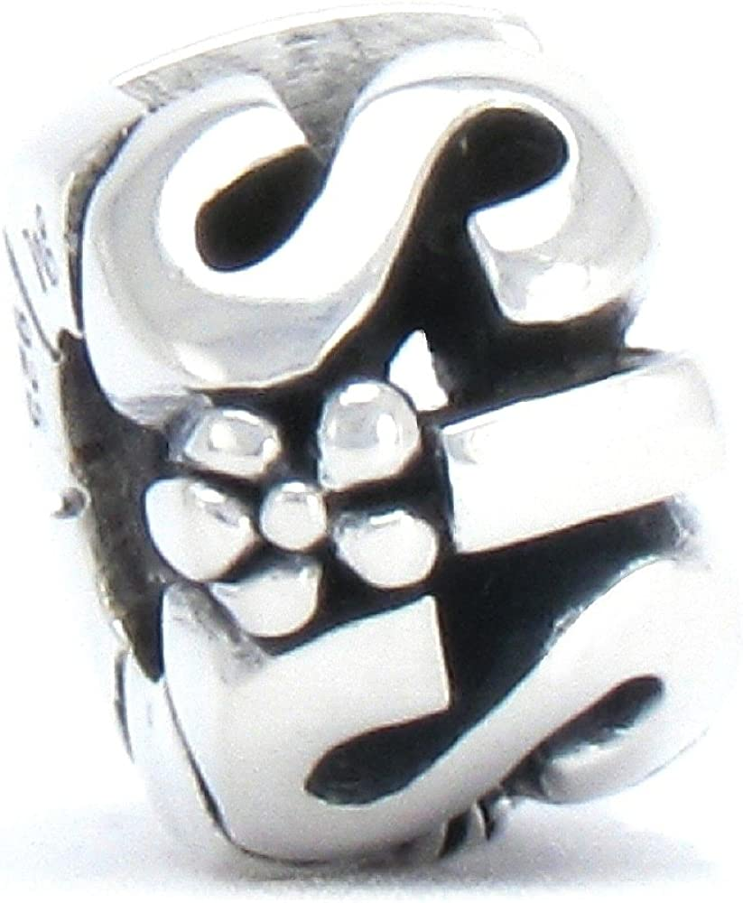European Charm Twelve Constellations Glass Bead Fit Sterling 925 Silver Bracelet