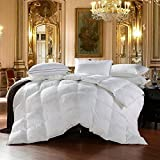 Egyptian Bedding All-Season Twin Size Luxury Siberian Goose Down Comforter Duvet Insert 750FP 1200 Thread Count 100% Egyptian Cotton (Twin, White Solid)