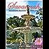 Savannah Walking Tour & Guidebook - Self Guided History Tour