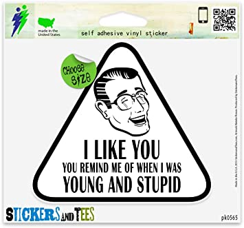 I Like You Young And Stupid Funny Bumper Sticker Decal