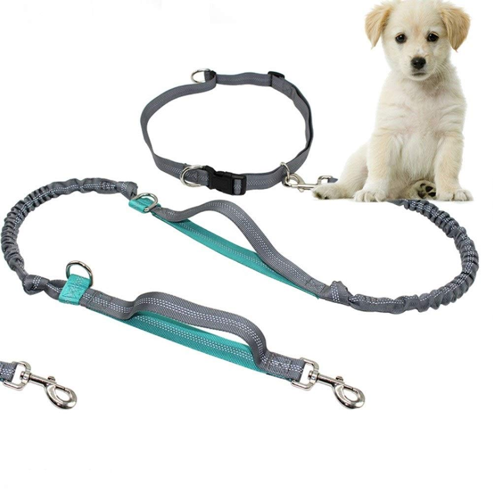 3pcs Hand-free Traction Durable Rubber Outdoor Leash belt, Shock Absorbers Up 150 Pounds Big Dog, Rope Length 155cm, Simple Design (Size   3pcs)