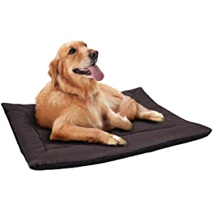Heated Dog Beds for Large Dogs & Cats