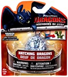 Dragons Defenders of Berk Hatching Dragons Egg [Contains 1 Mystery Figure]