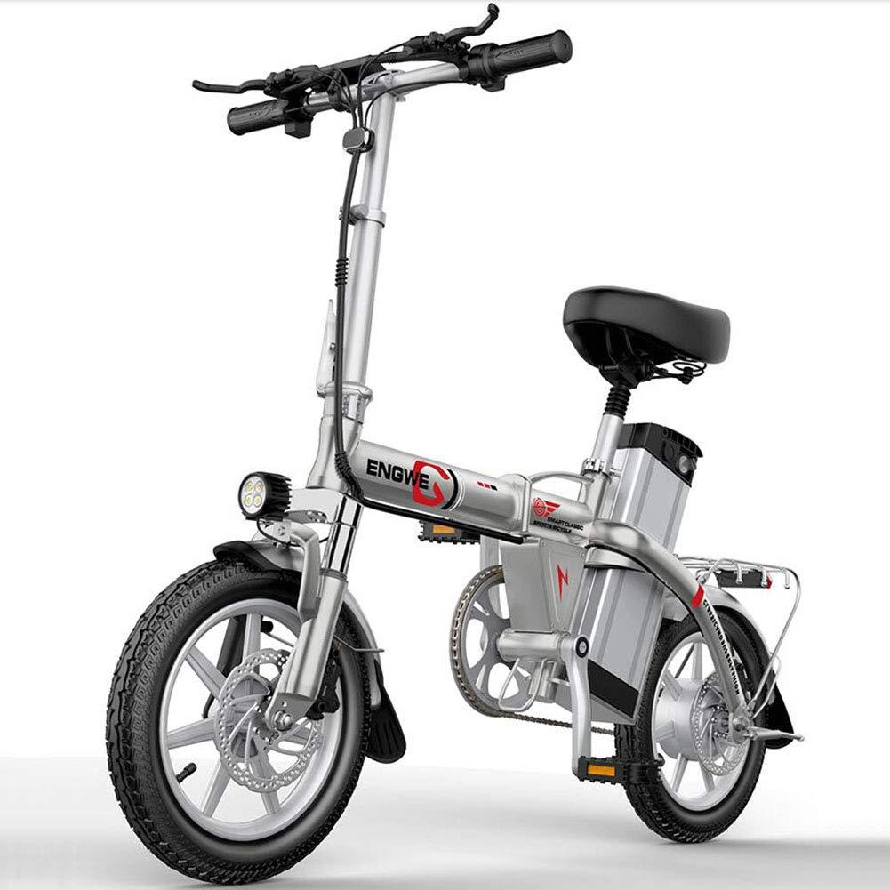 ZBB Motor sin Cepillo eléctrico eléctrico del Cuerpo de la ...