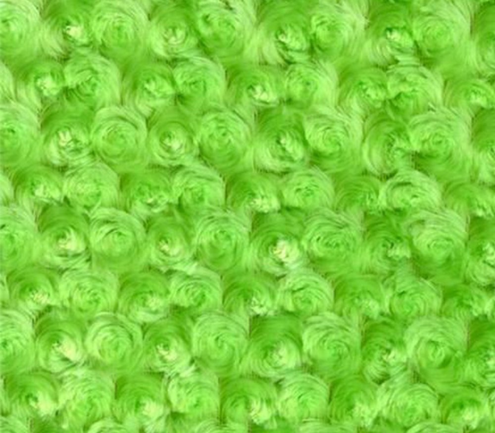 Minky Fabric Rosebud Lime / 58 Wide / Sold By the Yard by FABRIC EMPIRE   B017AKQVIM