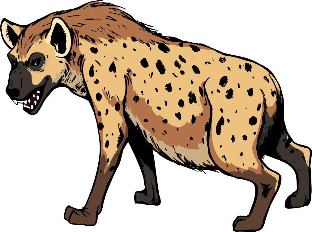 Hyena African Animal Home Decal Vinyl Sticker 14'' X 10''