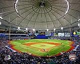 "Tampa Bay Rays Tropicana Field 8"" x 10"" Photo"