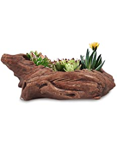 Dahlia Driftwood Stump Log Concrete Succulent Pot