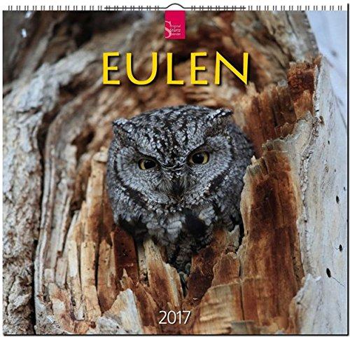 EULEN - Original Stürtz-Kalender 2017 - Mittelformat-Kalender 33 x 31 cm