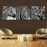 H.COZY Picture - art on canvas, Three-part parts model no. Animal Zebra Print in the on canvas. A canvas picture is much less expensive than an oil painting poster or placard (No frame)