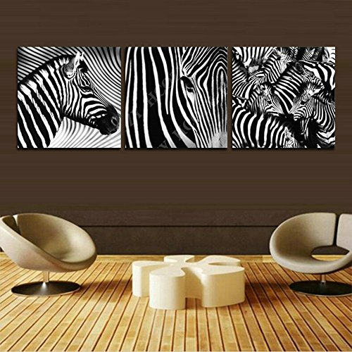 H.COZY Picture - art on canvas, Three-part parts model no. Animal Zebra Print in the on canvas. A canvas picture is much less expensive than an oil painting poster or placard (No frame) (Picture Zebra For Wall)