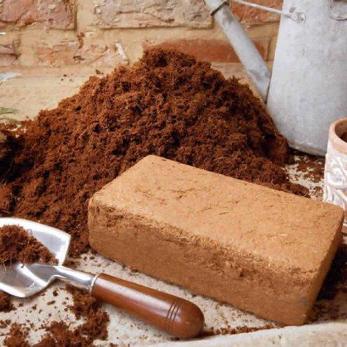 5-x-9-Briquette-Blocs-de-Compost-en-fibre-de-coco-semis-Reptile-litescargot