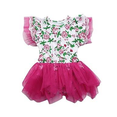 65eb22fa5 Dinglong Newborn Infant Kid Clothes Girls Cute Floral Lace Tutu ...