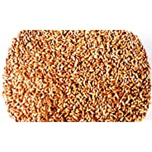 Hard Red Winter Wheat - 1 Lbs - Excellent For Growing Wheatgrass to Juice, Food Storage, Grinding to Make Flour & Bread, Grain, Ornamental Wheat Grass, and Sprouting Seed